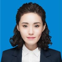 天津刑事辯護律師-葉秀文娜律師