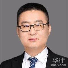 马鞍山律师-汤志平律师